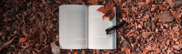 "<h2 class=""banner-title"">Populaire literatuur en romans</h2><a class=""btn"">Bekijk nu!</a>"