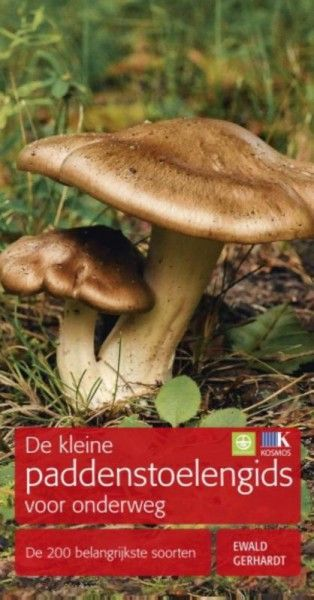 De kleine paddenstoelengids voor onderweg