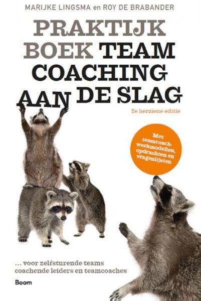 Praktijkboek Teamcoaching, aan de slag