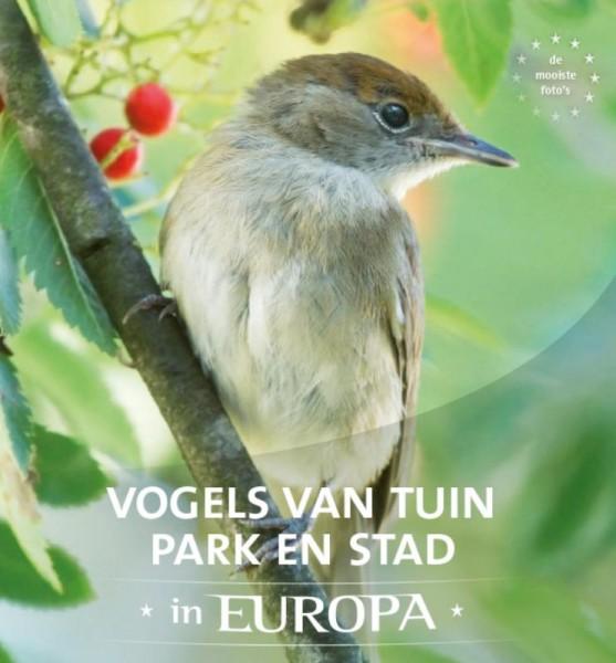 Vogels van tuin, park en stad in Europa