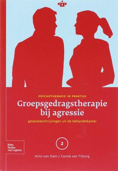 Groepsgedragstherapie bij agressie