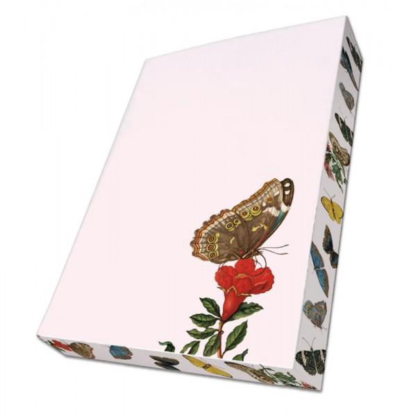 Insecten, Maria Sibylla Merian, Teylers
